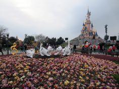 Disneyland Paris 101 Dalmatian topiary -
