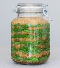 Dennensiroop tegen bronchitis, Smrekový sirup proti bronchitíde, Spruce syrup for bronchitis - POVVI Healthy Detox, Healthy Snacks, Healthy Eating, Colon Cleanse Detox, Vegan Recipes, Cooking Recipes, Dieta Detox, Wild Edibles, Keeping Healthy