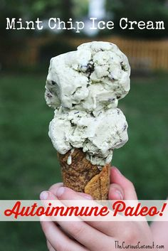 Mint Chip Ice Cream Recipe {Gluten Free, Autoimmune Protocol, Top 8 Allergen Free, and Paleo too! Mint Chip Ice Cream Recipe, Mint Ice Cream, Ice Cream Recipes, Paleo Dessert, Paleo Sweets, Delicious Desserts, Lactose Free Ice Cream, Paleo Ice Cream, Paleo Autoinmune