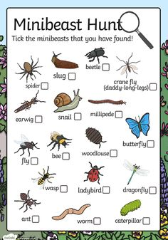 Going on a minibeast hunt? Don't go without this minibeast checklist! The list features some of the most common minibeasts, with boxes for children to tick. Forest School Activities, Nature Activities, Science Activities For Kids, Summer Activities, Learning Activities, Toddler Activities, Science Nature, Teaching Resources, Outdoor Education