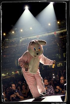 When the pink bunny comes out, you know you only have to wait 10-15 minutes until Green Day comes out!