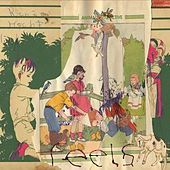 Animal Collective: Feels