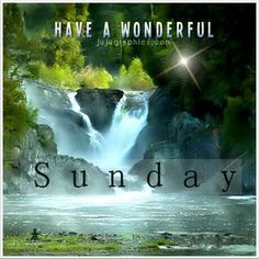 (Sunday) Meatty's FFS Comments and e-Tags Sunday Morning Quotes, Happy Sunday Quotes, Good Night Quotes, Morning Messages, Morning Greeting, Sunday Pictures, Sunday Images, Sunday Greetings, Days Of Week