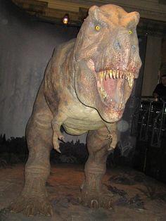 Frissonner devant le T-rex du Natural History Museum National History, Natural History Museum, Mille, T Rex, Lion Sculpture, Statue, Art, London, Art Background