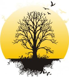 Cover Idea 5: I like the design of this tree and how it has some color but the main focus, the tree, is in black.