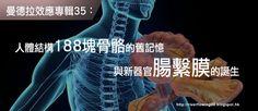. 2010 - 2012 恩膏引擎全力開動!!: 曼德拉效應專輯35:人體結構188塊骨骼的舊記憶與新器官腸繫膜的誕生