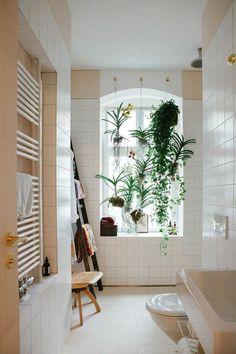Best Plants for The Bathroom- design addict mom