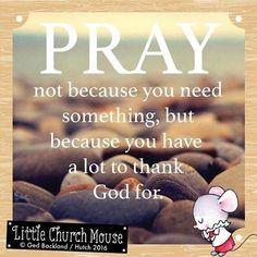 Little Church Mouse (@littlechurchmouseuk) | Instagram photos and videos