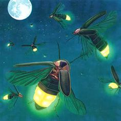 Firefly Painting, Firefly Art, Firefly Drawing, Firefly Tattoo, Firefly Serenity, Lighting Bugs, Bug Tattoo, Lightning, Art For Kids