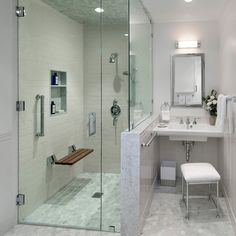 Photo Image MidCentury Modern ADA Accessible Guest House transitional bathroom Door Down to Floor no lip for Steam Shower