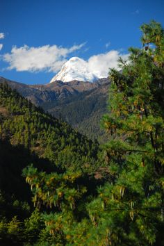 https://flic.kr/p/cjzsFq | Bhutan | Bhutan