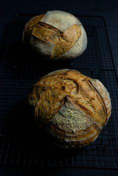 Durum wheat semolina, kamut and tritordeum