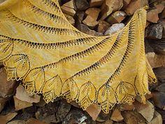 Begonia Swirl by Carfield Ma