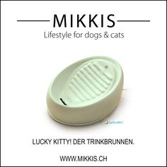 Lucky Kitty-Trinkbrunnen ... dass ihre Katze genügend trinkt! Jetzt in Pastell-Grün zu einem Spezialpreis bei www.mikkis.ch erhältlich!