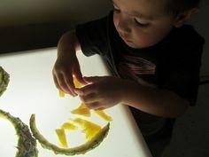 Little Wonders Pineapple Exploration