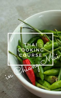 Find the best thai cooking course in Chiang Mai, Northern Thailand. Learn how to cook Thai food while on vacation!