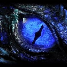 Blue dragon eye