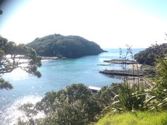 Gost Island NZ