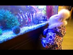 Алиса делает супер вертушечку!!! Entertainment for children Развлечение ...