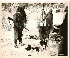 Captured German Infiltrator, Bulge, 1944 these German soldiers wearing GI uniforms were summarily shot. They caused havoc behind allied lines.   WWII