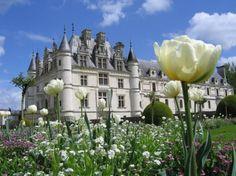 Cheanonceau Palace - Medieval Wallpaper ID 1140026 - Desktop Nexus Architecture