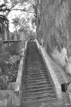 Steps in Bahamas