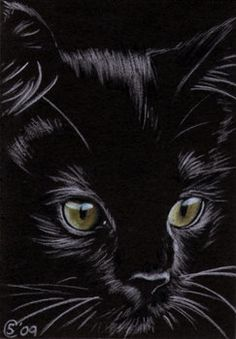 Black CAT kitten Halloween chat noir 156 drawing painting Sandrine Curtiss Art L. - - drawings cat Black CAT kitten Halloween chat noir 156 drawing painting Sandrine Curtiss Art L. Halloween Chat Noir, Halloween Cat, Halloween Painting, Halloween Drawings, Animal Paintings, Animal Drawings, Black Paper Drawing, Black Cat Drawing, Black Cat Art