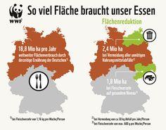 Flächenverbrauch durch deutschen Fleischkonsum, infograph, map, wwf, meat consumption, saxony, sachsen, mecklenburg-vorpommern