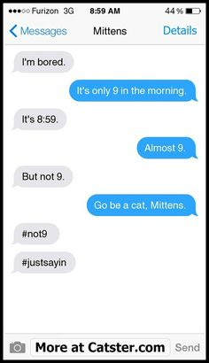 Texts from Mittens: The Tax Injustices Edition   Catster