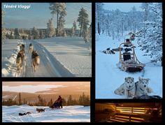 """Ténéré Viaggi - 19-24 febbraio: 4 giorni alla scoperta della Lapponia su slitte trainate dagli husky, alla fine del tour sarete esperti """"musher""""."""