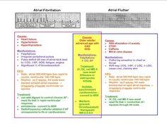 Cardiovascular Health System