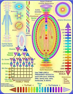 The Healing Powers of Reiki - Reiki: Amazing Secret Discovered by Middle-Aged Construction Worker Releases Healing Energy Through The Palm of His Hands. Cures Diseases and Ailments Just By Touching Them. And Even Heals People Over Vast Distances. Mudras, Endocannabinoid System, Chakra Balancing, Chakra Healing, Tantra, Book Of Shadows, Ayurveda, Cosmic, Allergies