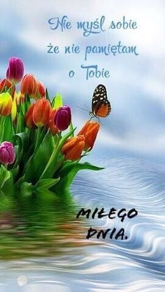 Miłe – – – Source by Beautiful Love Pictures, Beautiful Flowers, Cute Sentences, Good Morning Greetings, Good Vibes, Animals And Pets, Humor, Funny, Polish Sayings