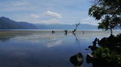 Bathing on the shores of Lake Atitlán Photo by Catherine Macaulay - 2015 National Geographic Photo Contest