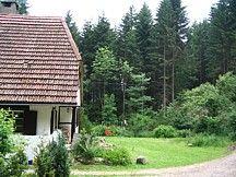 Waldhaus im Schwarzwald