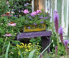 Add Charming Details-A little bench and planter made from a wood crate set the tone for the garden. Located near the entrance to the backyard, the combo serves as a focal point. Sikorski added more interest by painting it purple, her favorite color