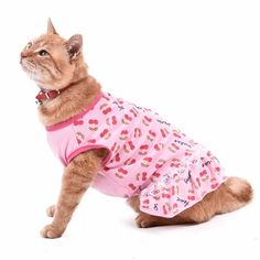 Summer Cat Dress Pet Clothes Cherry Small Dog Clothing Kitten Vest Cat Skirt Pet T-shirt Princess Dresses Products for Animals Funny Dogs, Cute Dogs, Pets Online, Cat Wedding, Pet Clothes, Dog Clothing, Dog Bag, Cat Dresses, Unique Cats