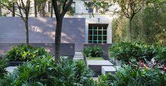Jardim com plantas nativas