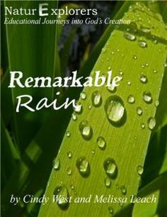 Shining Dawn Books » Remarkable Rain  from the makers of our Creek Study Guide