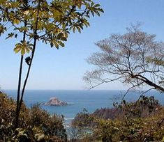 Cabo Blanco National Park, near Cabuya on the southern tip of the Nicoya Peninsula, Costa Rica
