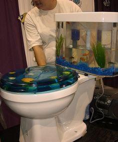 Fun Aquariums