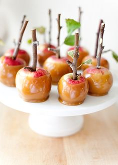 Caramel Apples with Branches or Twigs! More Decor @BrightNest Blog