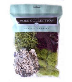 Moss Collection Variety Pack Moss with Red