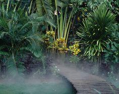 Oasis à Madagascar | Jardin | Camille Muller paysagiste