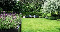 Garden Seating, Go Green, Garden Inspiration, Garden Landscaping, Stepping Stones, Landscape Design, Mid-century Modern, Home And Garden, Backyard