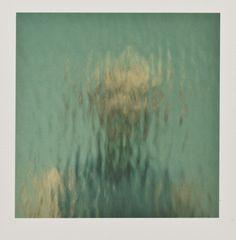 Ann Hamilton, Flectere, 2000, collection, MoMA Art For Art Sake, All Art, Ann Hamilton, Collage, Polaroids, Moma, Headers, Textile Art, Art Forms