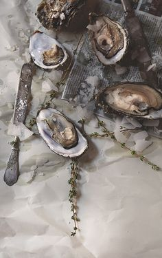 Raw Pacific oysters with sea salt and thyme | Seattle Commercial Photographer | Sean Blanton