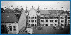 Protecting your home from water damage with Aluminum. Aluminum gutters help get the job done. Black And White Building, Black And White City, Windows Wallpaper, Cool Wallpaper, Protecting Your Home, Water Damage, City Buildings, Free Stock Photos, Paris Skyline