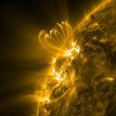 Loops on the sun  Cascading loops spiral above an active region on the sun in an extreme-ultraviolet image sent back to Earth by NASA's Solar Dynamics Laboratory on Jan. 15-16. These loop structures are made of superheated plasma, just one of which is the size of several Earths.