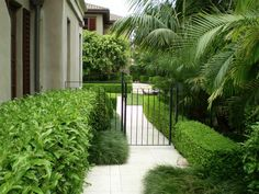 City Gardens | Shafer Design Limited